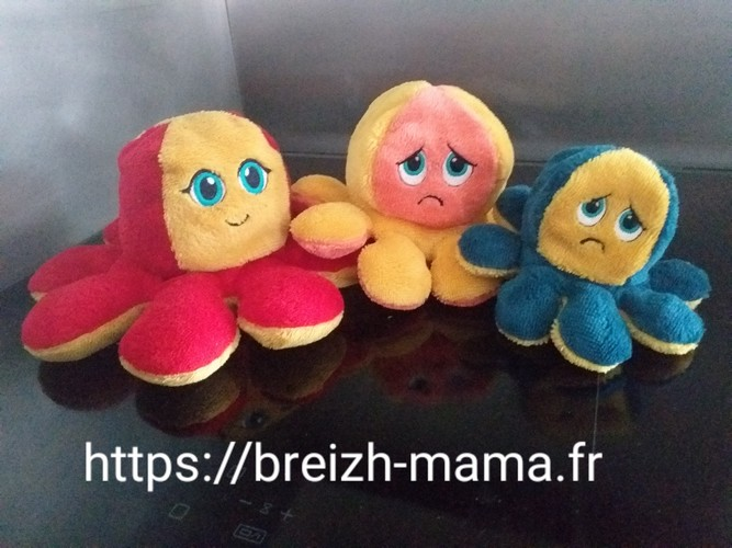 Famille Poulpe Emotion