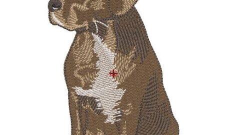 Motif broderie cane corso labrador